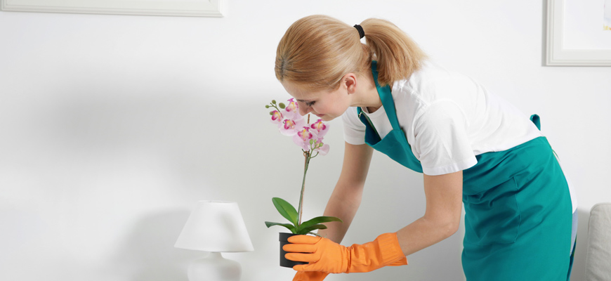 Green Cleaning Commitments